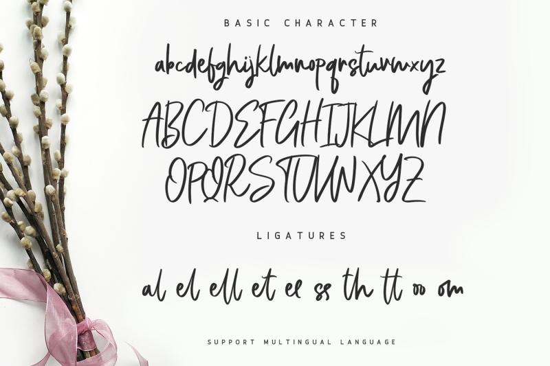 bellevue-a-traveler-script-font