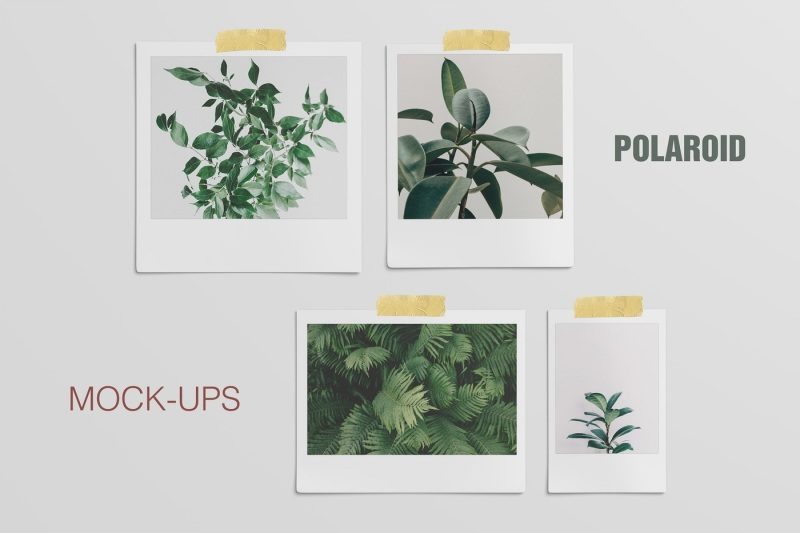 Free Polaroid Mockup (4 Sizes) (PSD Mockups)