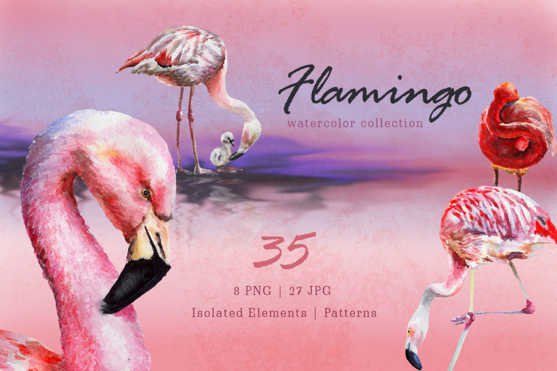 nbsp-flamingo-watercolor-png