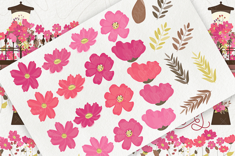cosmos-01-flower-clipart-png-and-vector-graphics