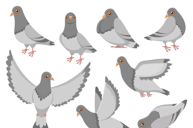 cartoon-pigeon-city-dove-bird-flying-pigeons-and-town-birds-doves-is