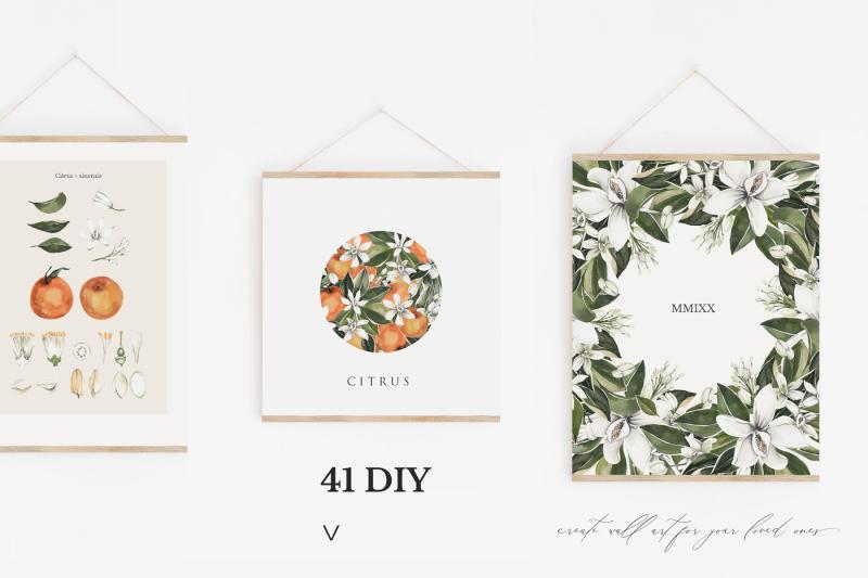 natural-study-fleur-d-orange-set-l-watercolor-floral-set