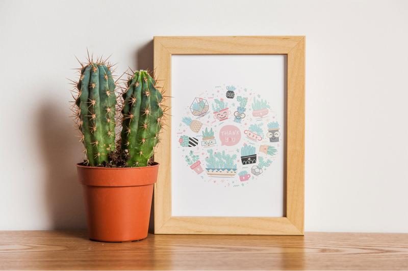 valentine-s-day-cactus