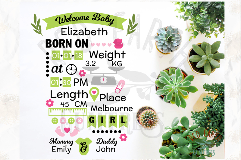 baby-girl-announcement-chart-template-svg-dxf-png-eps-pdf