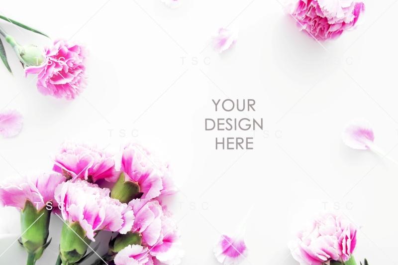 pink-flower-stock-photo