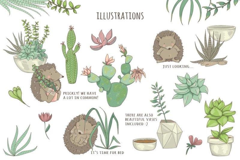 succulents-amp-hedgehogs-graphic-set