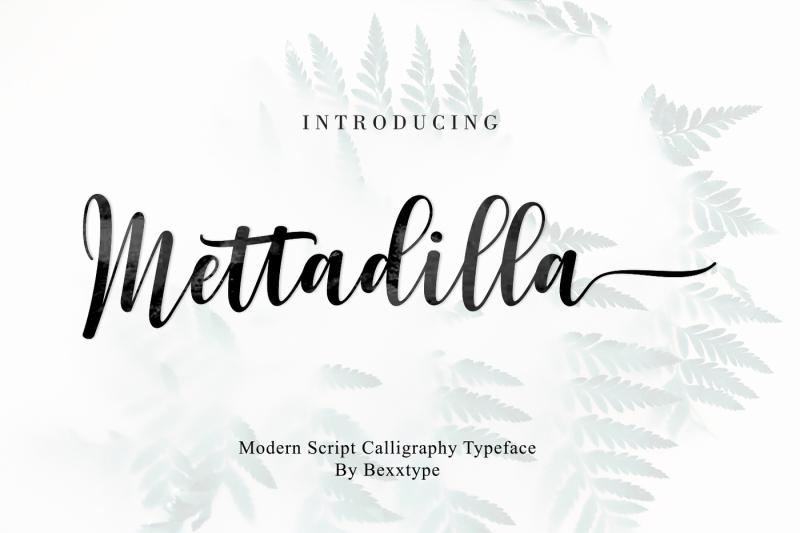 mettadilla-script-winter-collection