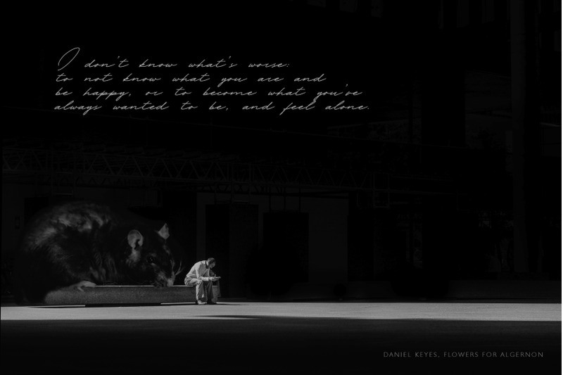 melancholy-font