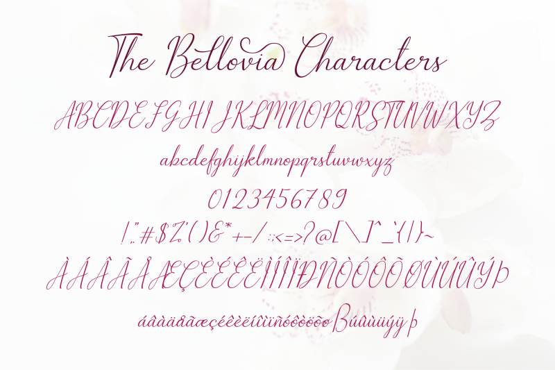the-bellovia