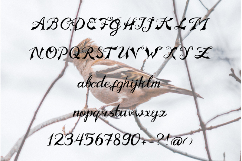 old-motorcycle-handdrawn-font