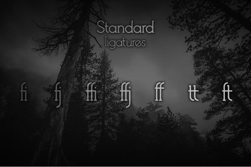 debock-rounded-sans-amp-serif-font