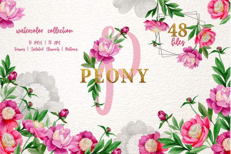 pink-peony-tenderness-watercolor-png