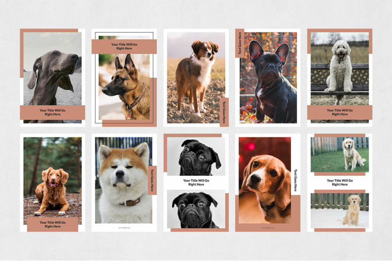 dogs-pinterest-posts