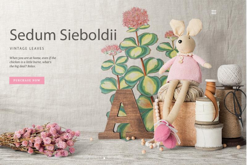 leaves-vintage-lesedum-sieboldii