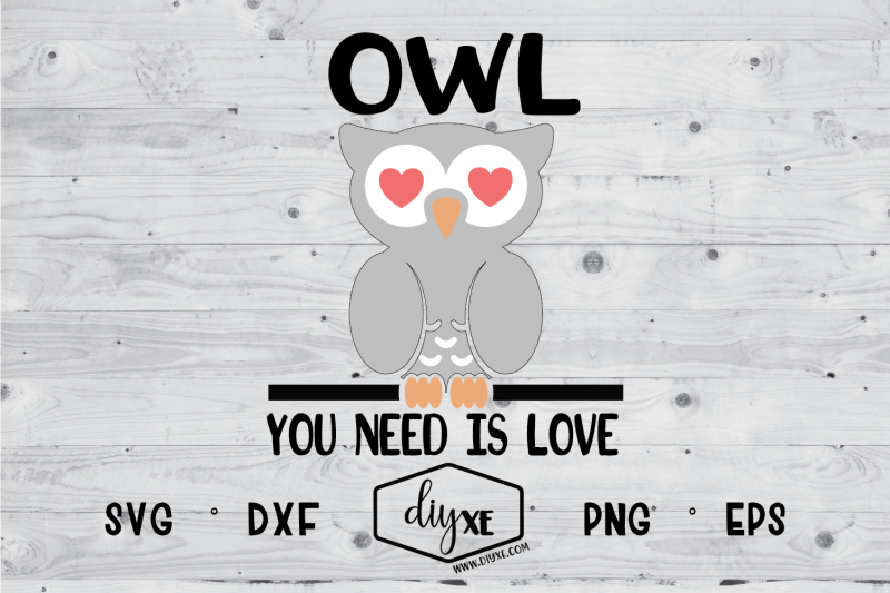 owl-you-need-is-love