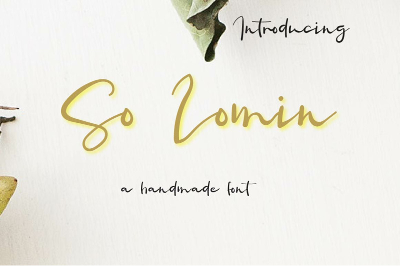 so-lomin-valentine-font-by-watercolor-floral-designs