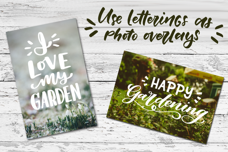 garden-vibes-graphics-set