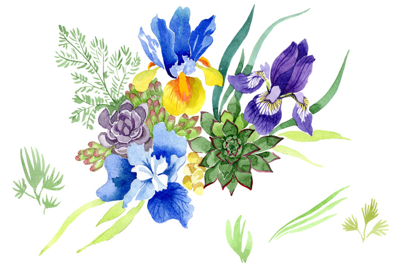 bouquet-with-blue-irises-watercolor-png