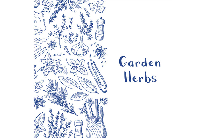 vector-hand-drawn-herbs-and-spices-background-with-place-for-text-illu