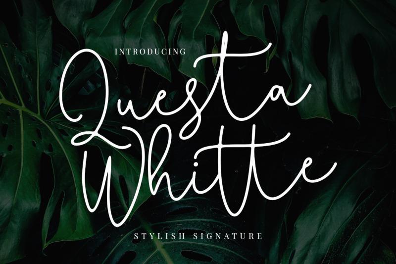 questa-whitte-script