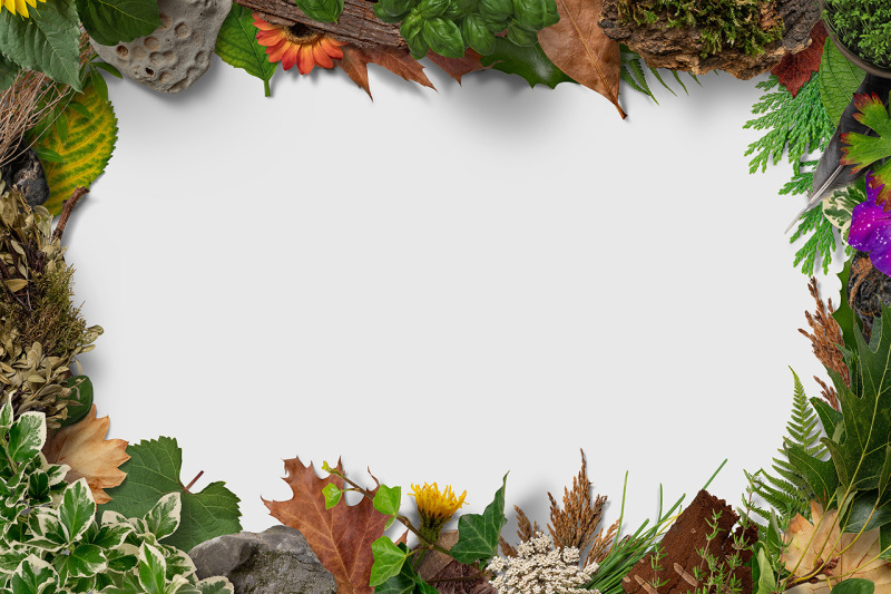 5 nature frame backgrounds by h3design thehungryjpeg com 5 nature frame backgrounds by h3design