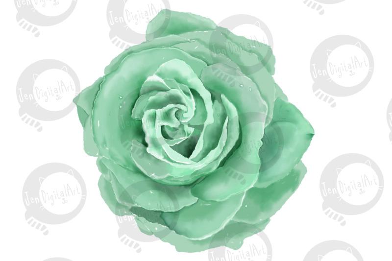6-digital-watercolor-roses-clip-art-illustrations-png-jpeg