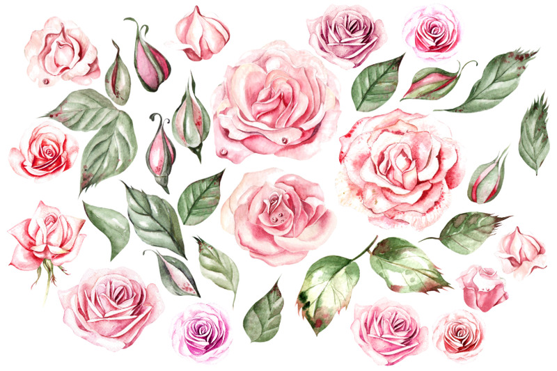 watercolor-roses-amp-cotton