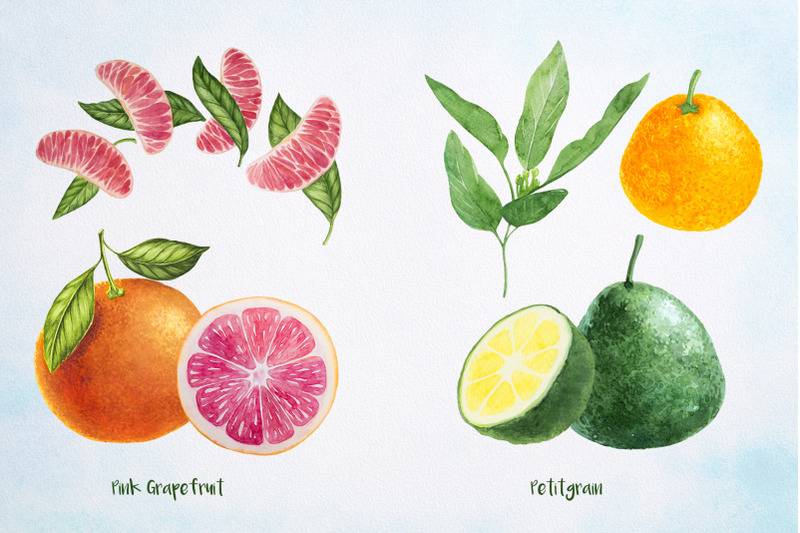 essential-oils-watercolor