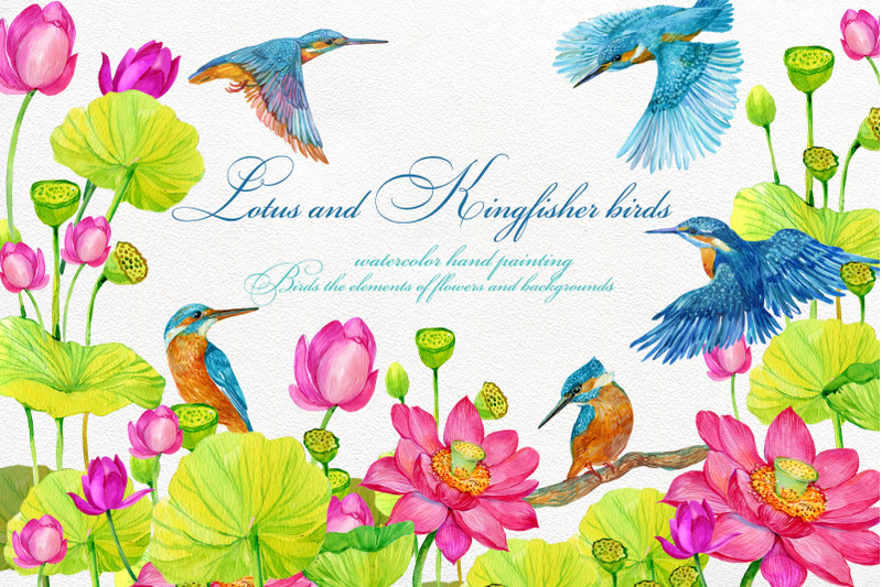 kingfisher-and-lotus-flowers-clipart