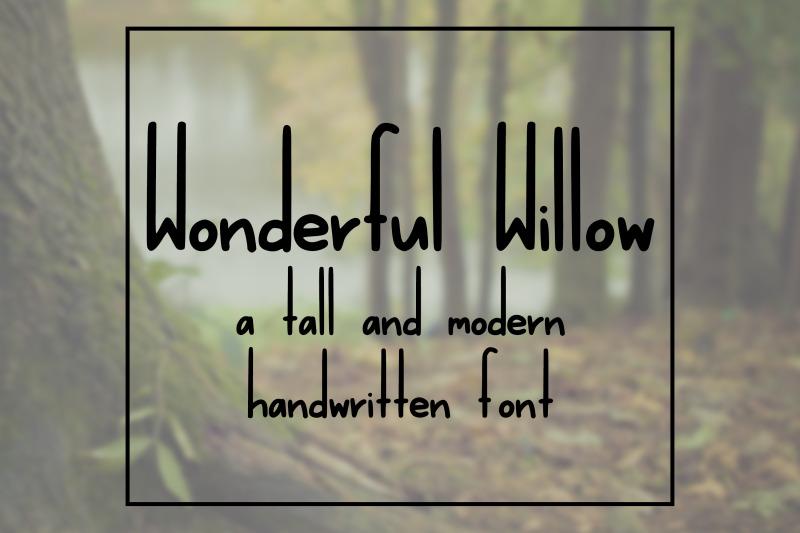 wonderful-willow-a-tall-and-modern-handwritten-font