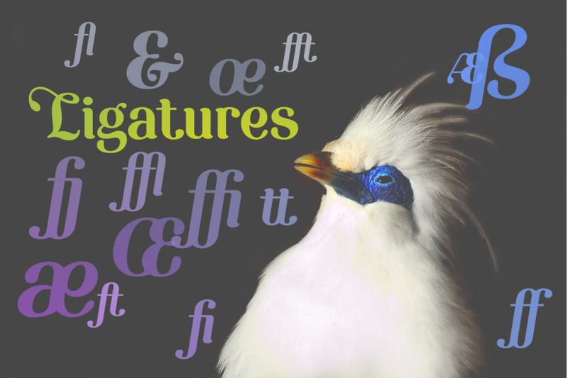 etewut-serif