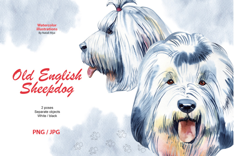 watercolor-dog-old-english-sheepdog