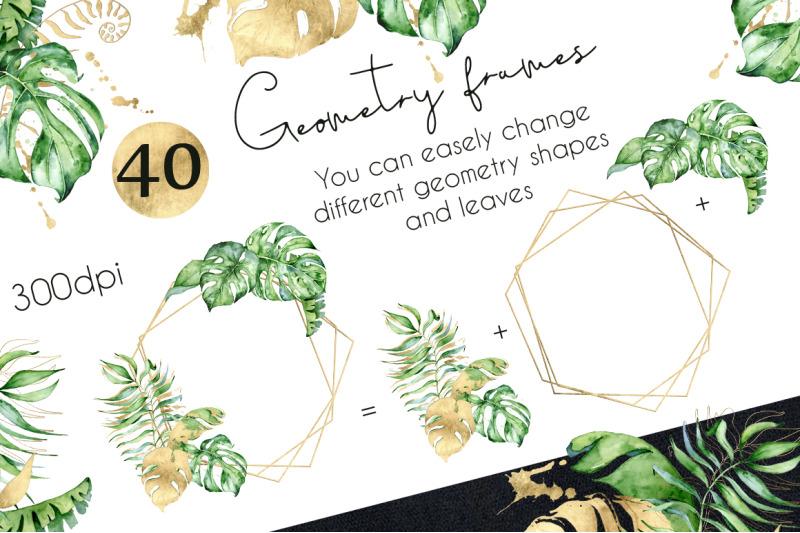 geometry-tropical-frames-creator