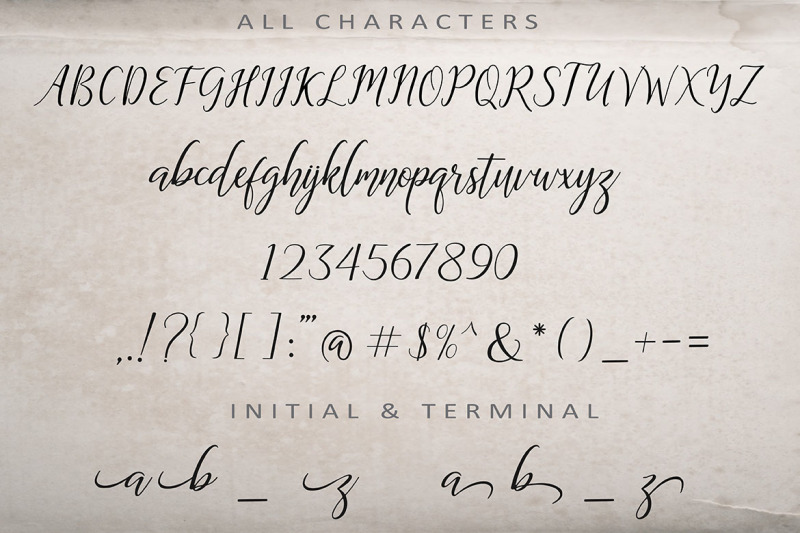 the-dance-signature-a-bouncy-font