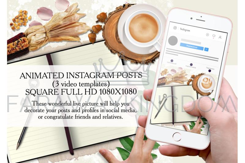 flowers-floral-rose-petals-instagram-animated-template-set