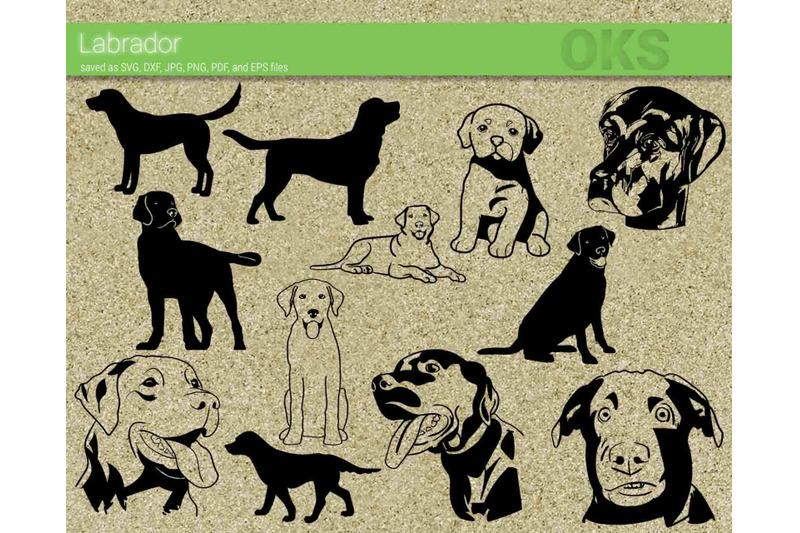 Download labrador svg, svg files, vector, clipart, cricut, download ...