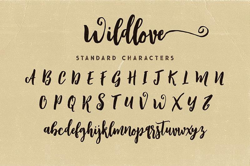 wildlove-script-font