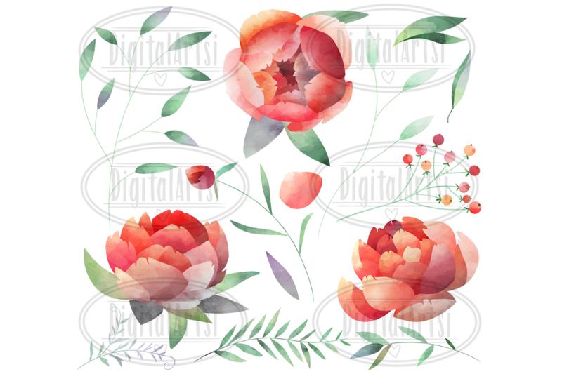 watercolor-peonies-clipart
