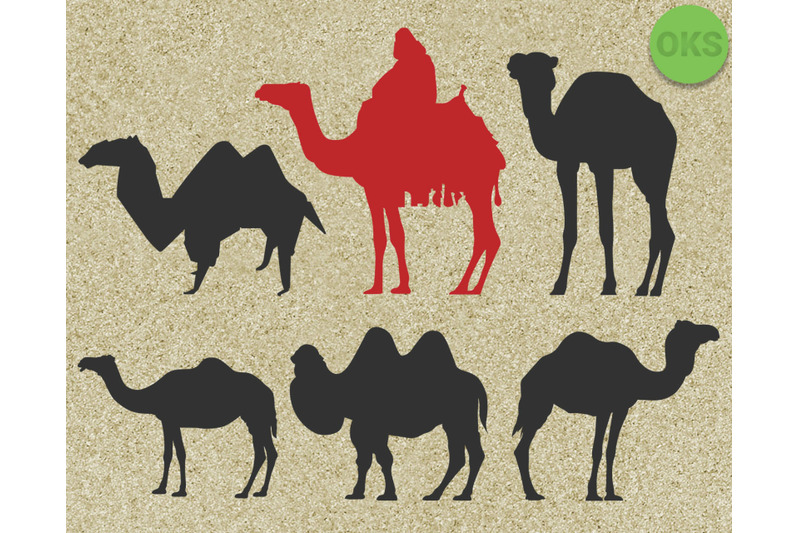 camel-svg-camel-svg-files-camel-vector-camel-clipart-cricut-downl
