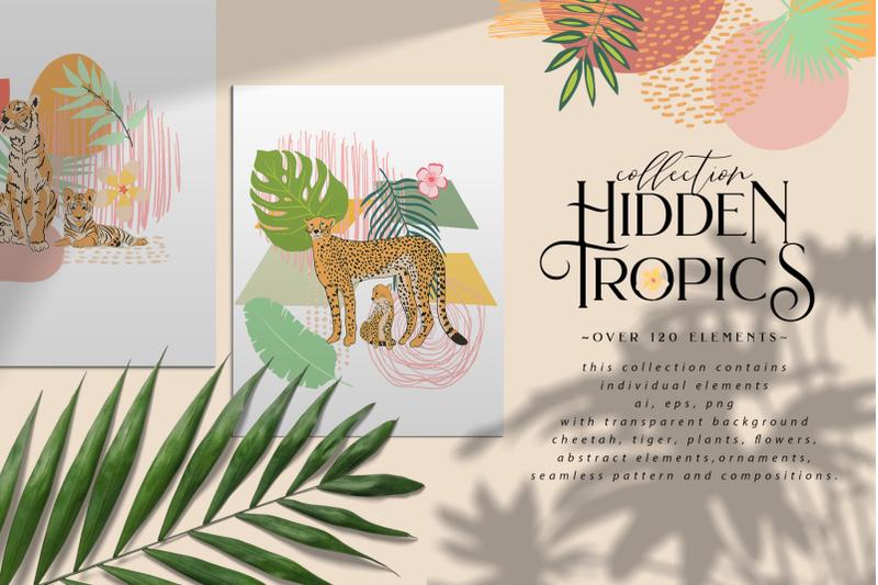 hidden-tropics