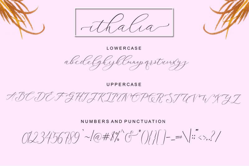 ithalia-script