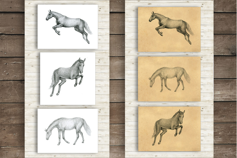 horses-clipart-hand-drawn
