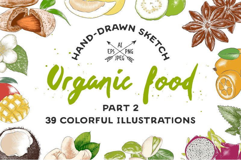 set-of-39-organic-food-sketches