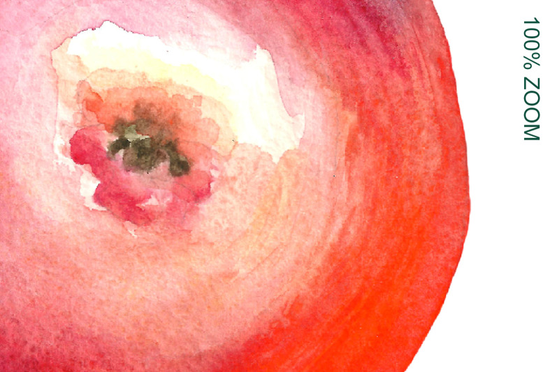 watercolor-apples-collection