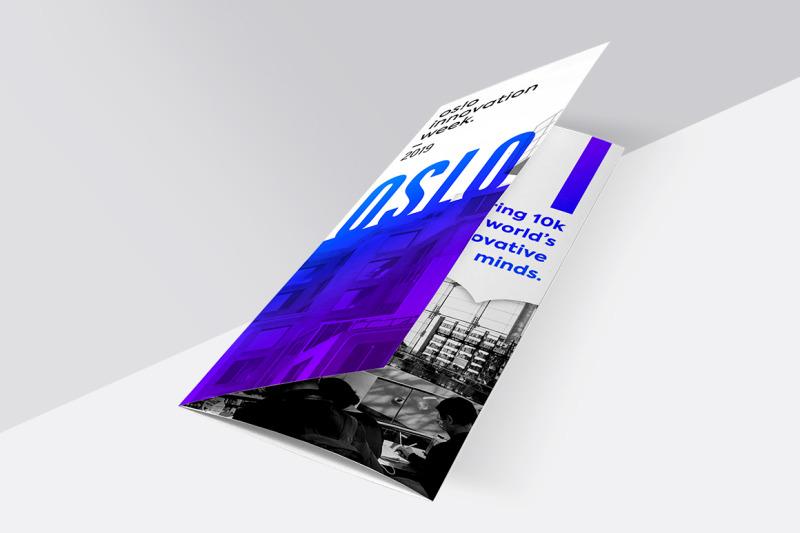 brochure-mockup-set-tri-fold
