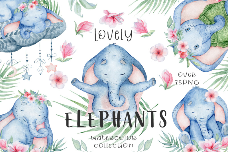 lovely-elephants-watercolor-set