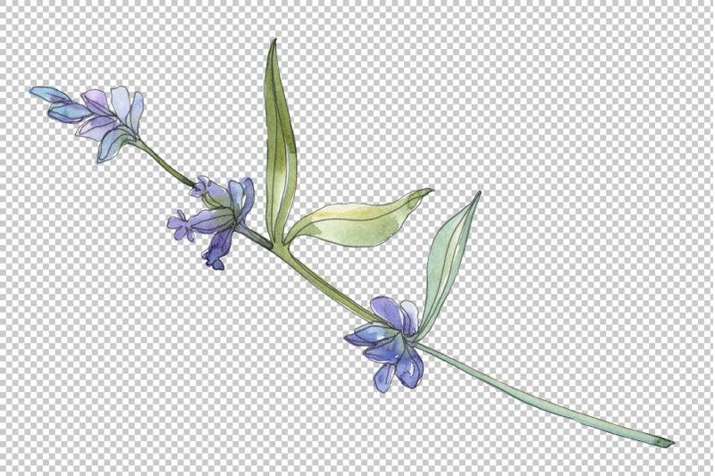 bouquet-summer-breeze-lavender-watercolor-png