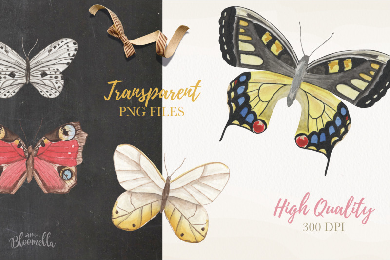 watercolor-butterfly-clipart-elements-butterflies-insects-painted-png