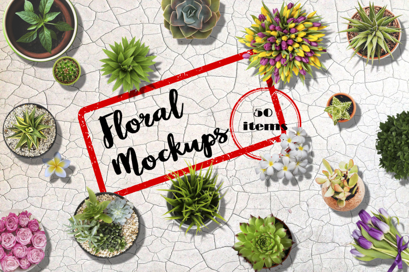 Free Floral Mockups. Flowers in pots and not only (PSD Mockups)