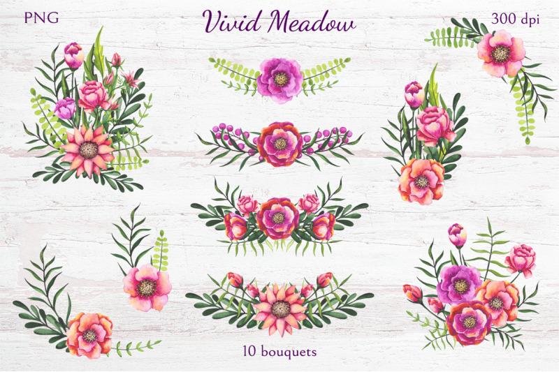 vivid-meadow